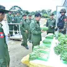 Military-owned farming and livestock breeding are not meant for profits, but for social welfare