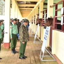 Senior General Min Aung Hlaing inspects Livestock Breeding and Training Battalion in Bahtoo Station