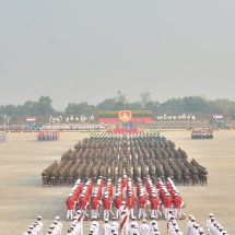 Parade of 74th Anniversary Armed Forces Day held