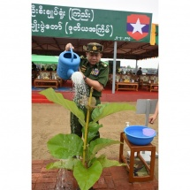 Families of the Office of the Commander-in-Chief(Army, Navy and Air), military command headquarters hold second monsoon tree-planting ceremonies